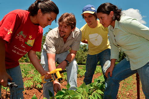 Students learning in the field