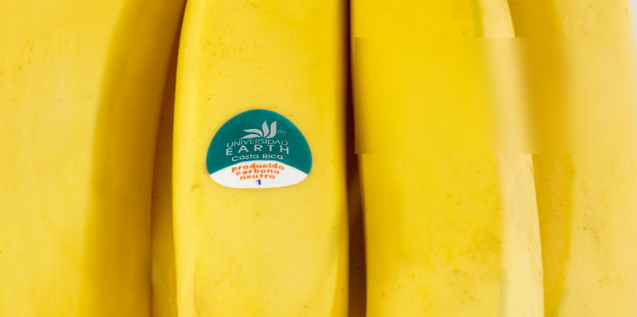feature_banano