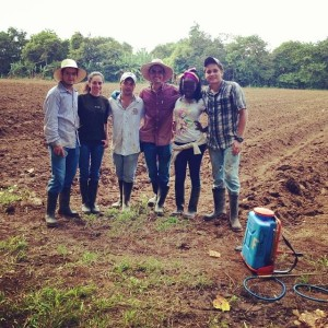 The entrepreneurs of Ñame Tropical S.A. pause for a photo while planting their first yam crop in February,2014.