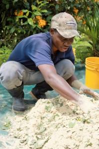 Emmanual Fornah ('14, Sierra Leone) helps Miguel prepare chicken feed.