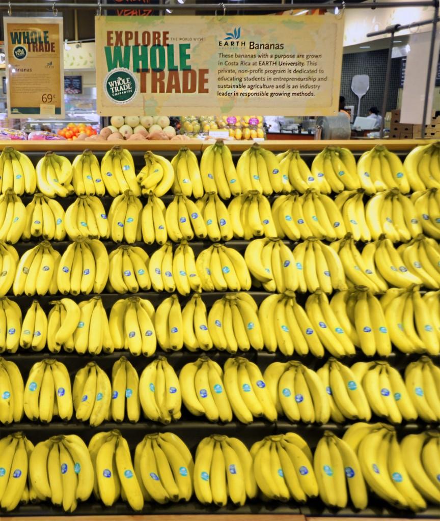 Es un proceso complejo pero desde luego hecho con mucho amor y dedicación para brindar un banano de excelente calidad.