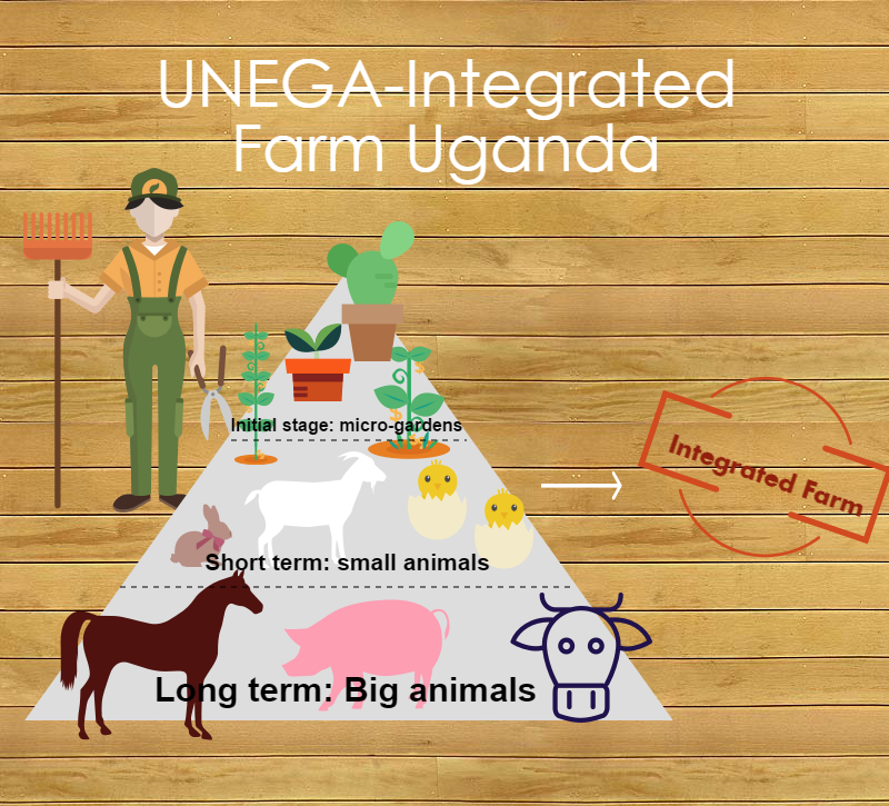 This are the three stages of the integrated farm.