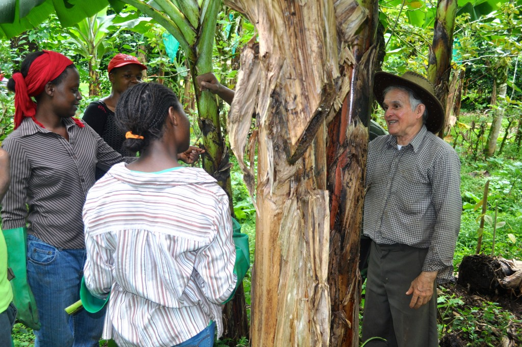 Professor Arce with students on the organic banana plantation.