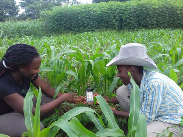 The Smart Villages mobile app aims to grow added value operations within the Zimbabwean agricultural supply chain. (Photo: Facebook, Respect Musiyiwa)
