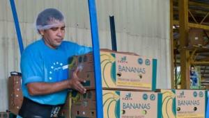 banana3cut