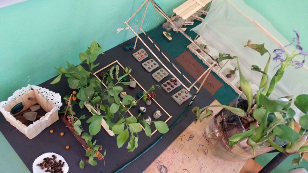 "As part of the motivational activities, teachers ask for to-scale representations of ideas that should be implemented at the high school. The photo shows one such project in which a student built a mock greenhouse and hydroponic system. ""This helps students visualize the projects at their real size. By the time they reach the theoretical part of the lesson or course, they have already learned many of the concepts on their own,"" Núñez said."
