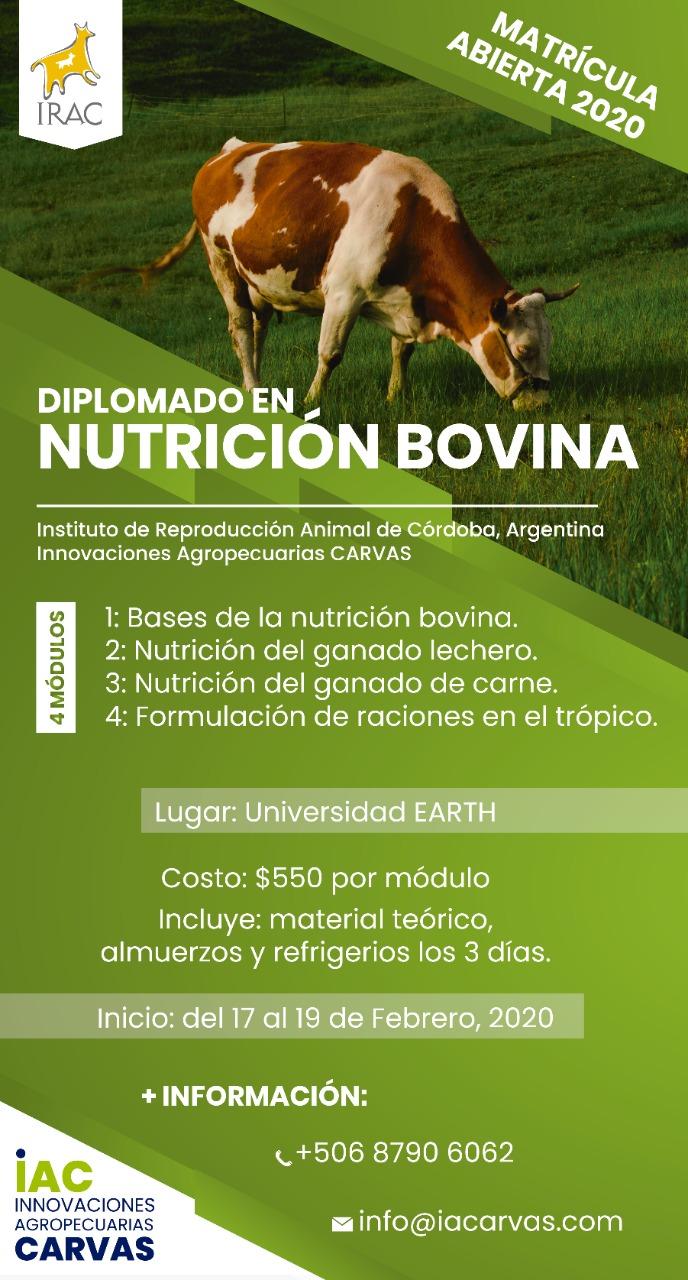 Diplomado Nutrición Bovina